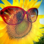 icon_sunflower
