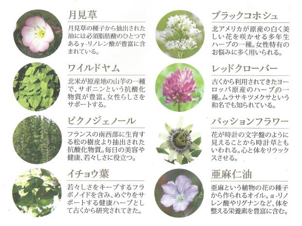lunaberry_herbs