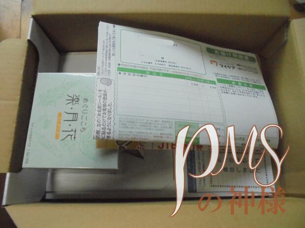 raku_package_2