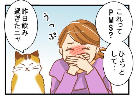 seirimae_hakike